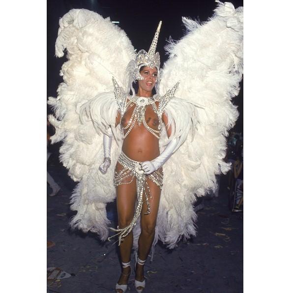 Dispensada da Mocidade, Monique Evans estreou como rainha dos ritmistas da São Clemente em 1988. Em 1991, desfilou como rainha grávida da filha Bárbara Evans. Apesar das controvérsias, Monique é tida como a primeira rainha de bateria do Carnaval. A ex-mod<br>
