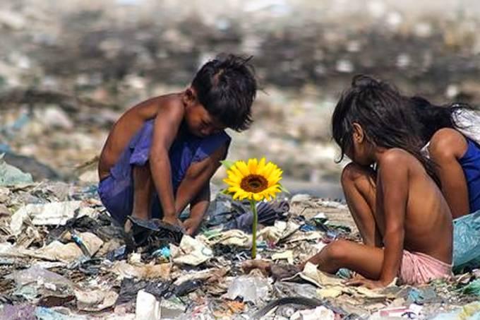 ilha-das-flores-1989-de-jorge-furtado.jpeg