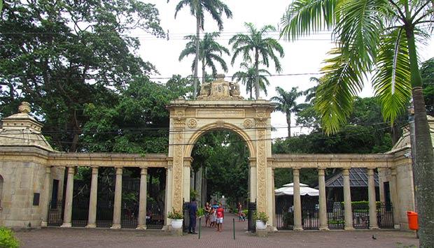 zoo-leticia-pimenta.jpg