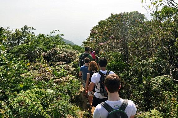 Fundado em 1961, o Parque Nacional da Tijuca pode ser percorrido por cerca de 90 trilhas oficiais<br>