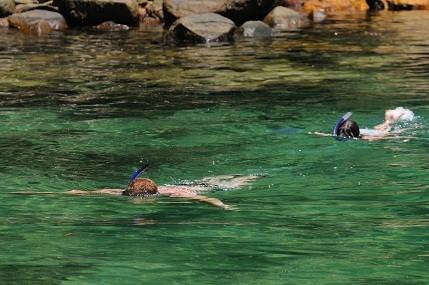 De tão translúcida, as águas dali permitem um perfeito mergulho de snorkel para admirar incontáveis cardumes de peixes e estrelas do mar<br>