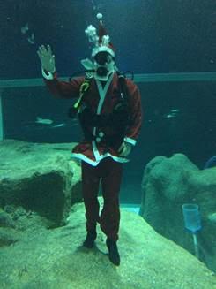 AquaRio: Papai Noel tem marcado presença no Grande Tanque Oceânico