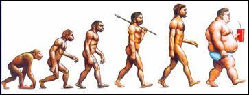 evolu%c3%a7%c3%a3o
