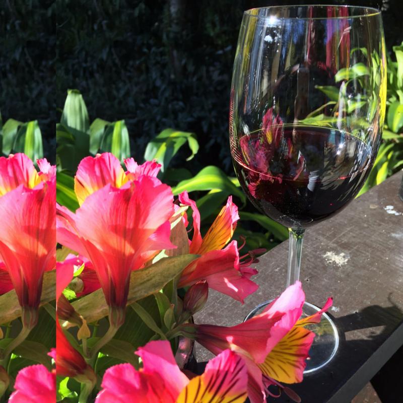foto vinho tinto flor