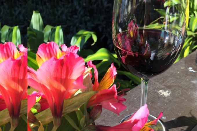 foto-vinho-tinto-flor