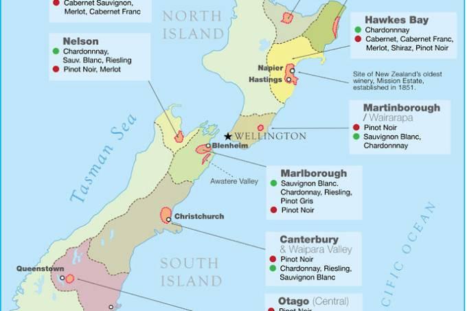 new-zeland-wine-map