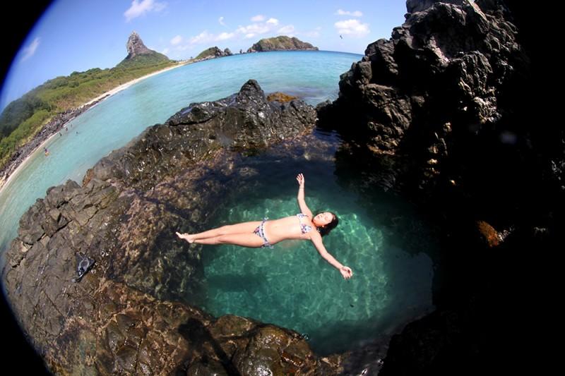 noronha divers mergulho tartaruga tubarao praia cachorro