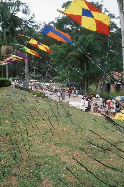Festival de Pipa