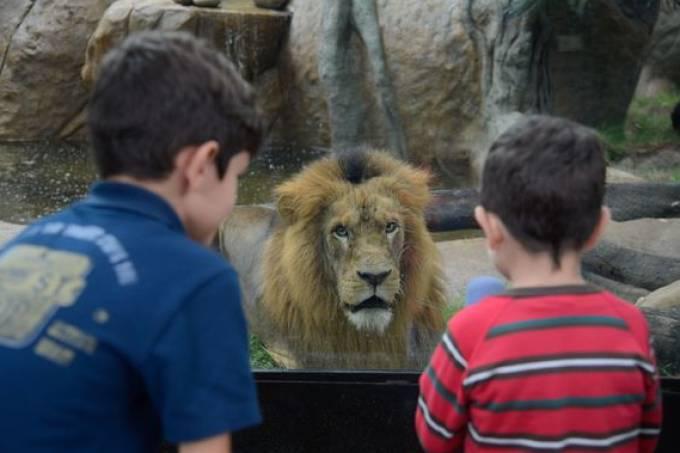 Rio Zoo (Foto: Tomaz Silva / Agência Brasil)