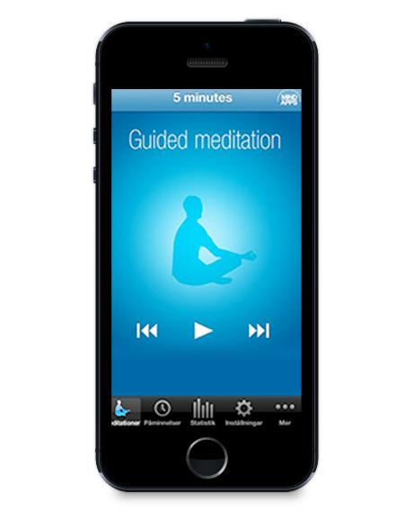 The-Mindfulness