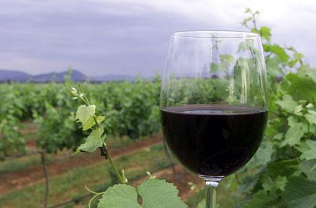 vinhos-org%c3%a3nicos