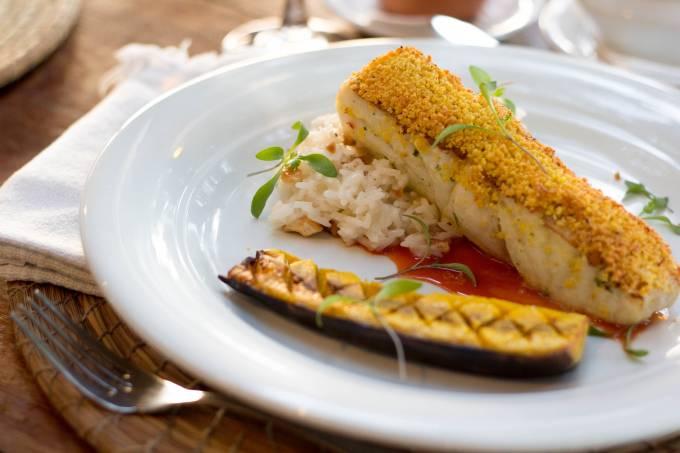 Aprazível; peixe tropical