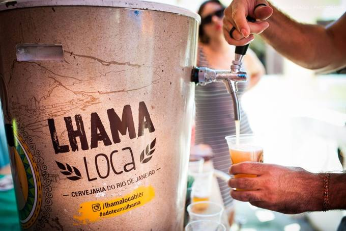 lhama-loca