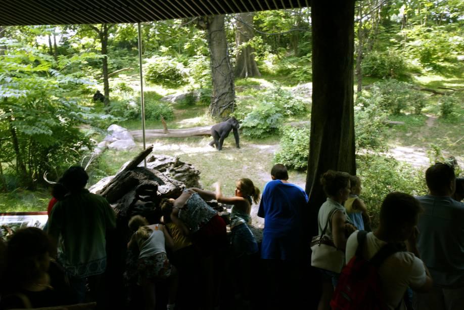 Zoológico do Bronx, em Nova York: referência