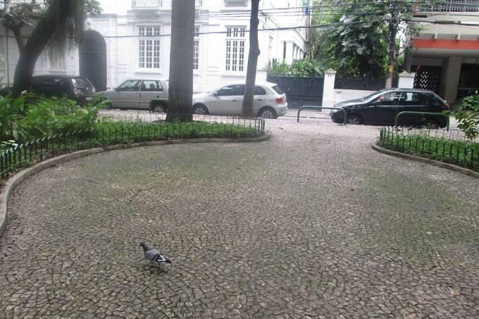 Largo_dos_Leões