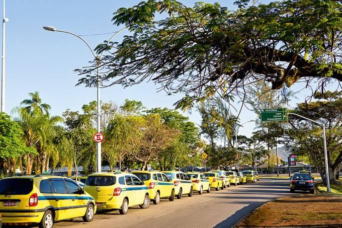 taxis-amarelinhos