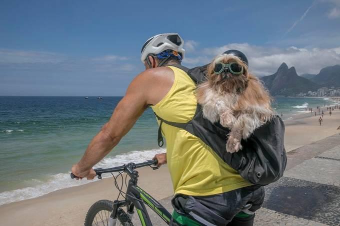 bike dog e Steve