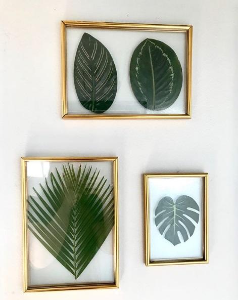 Apartamento 1104 (@ap.1104rj): emoldurar folhas também é uma boa ideia