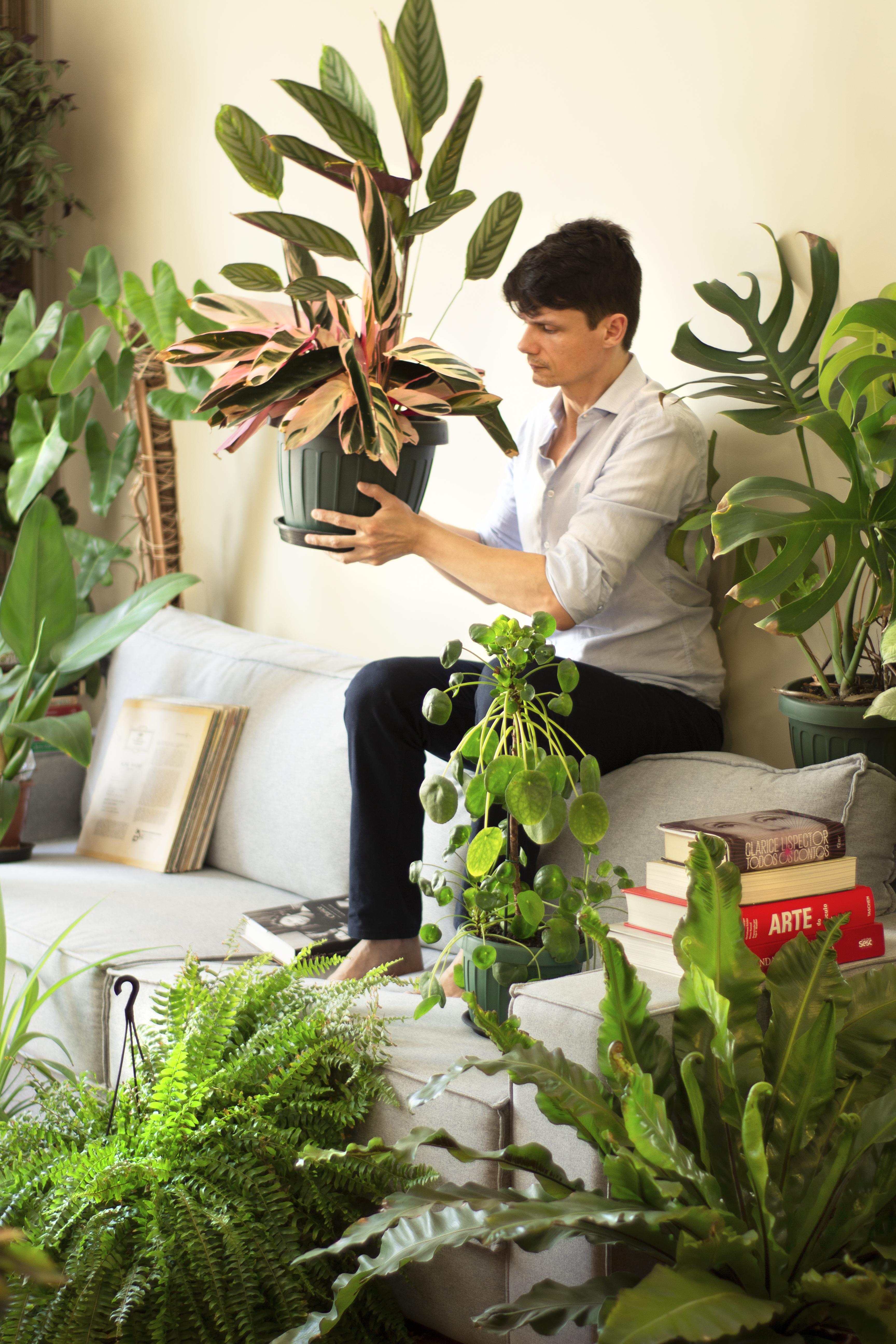 ator odilon esteves sentado no encosto do sofá e segurando um vaso de planta