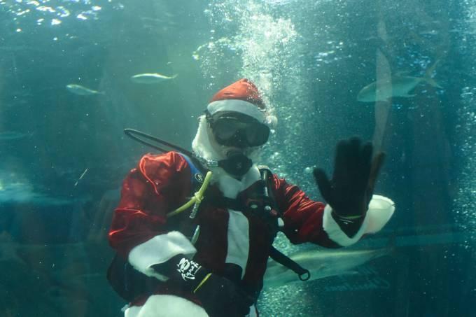Papai Noel no AquaRio