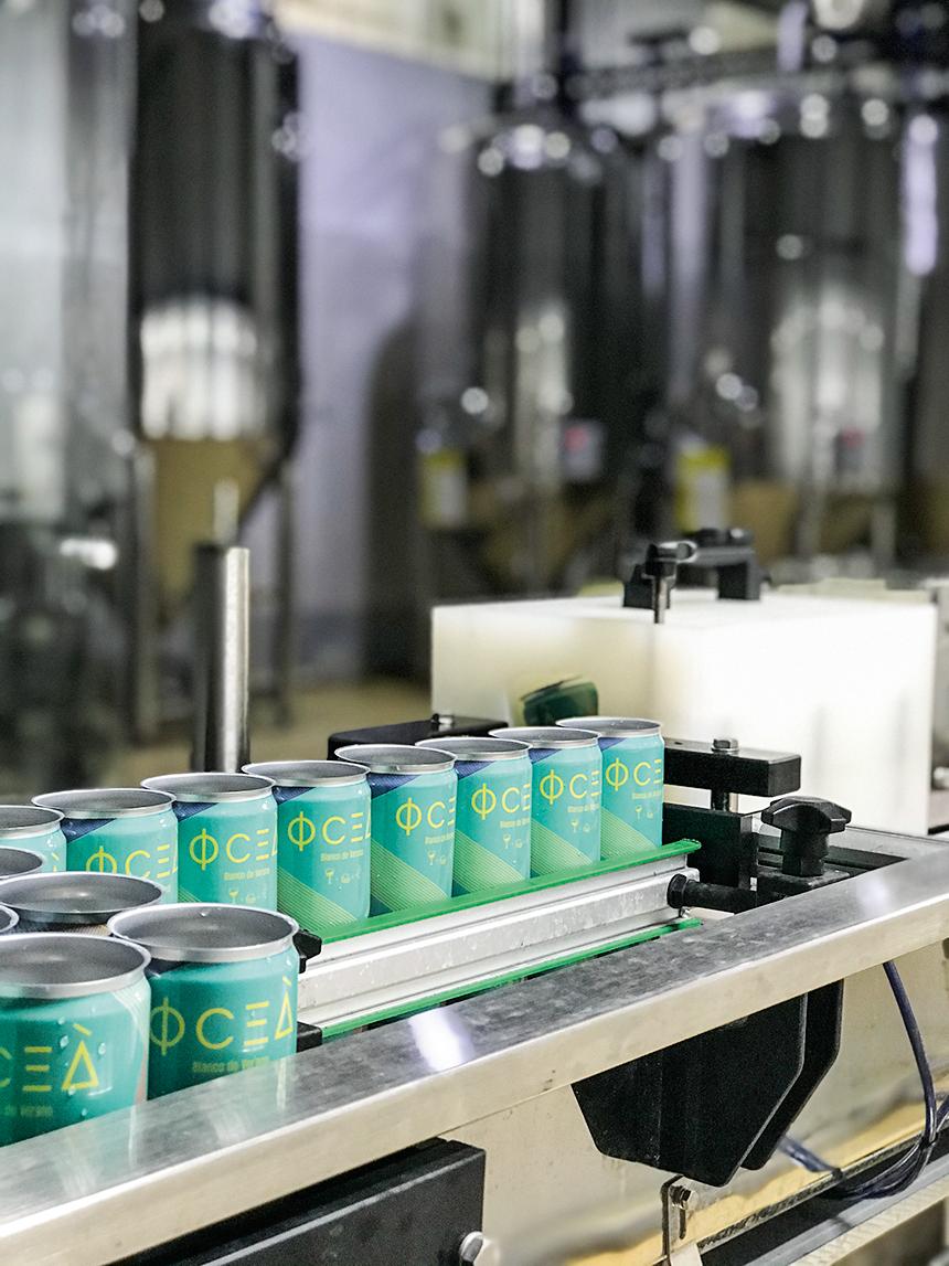 linha de produçãode drinquesà base de vinho