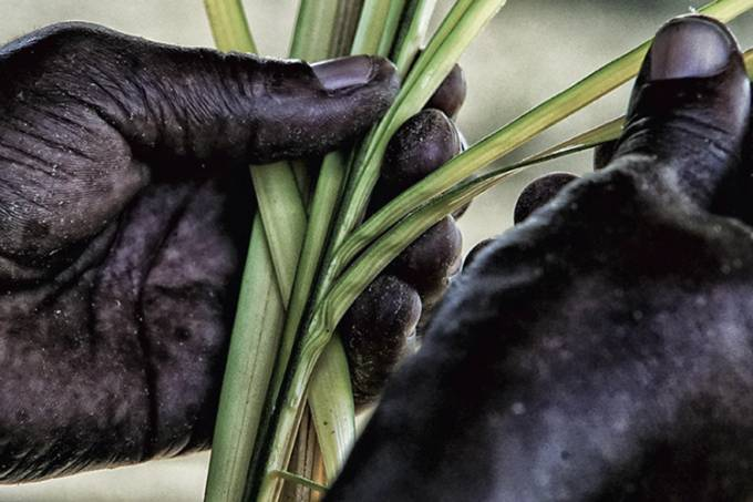 Marcela Bonfim apresenta o projeto Reconhecendo a Amazônia Negra: na Casa França-Brasil