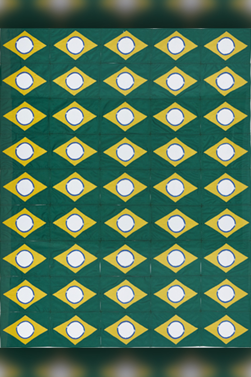 The New Brazilian Flag #8, de Raul Mourão (2020)