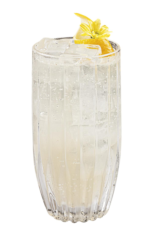 Spirit Copa Bar