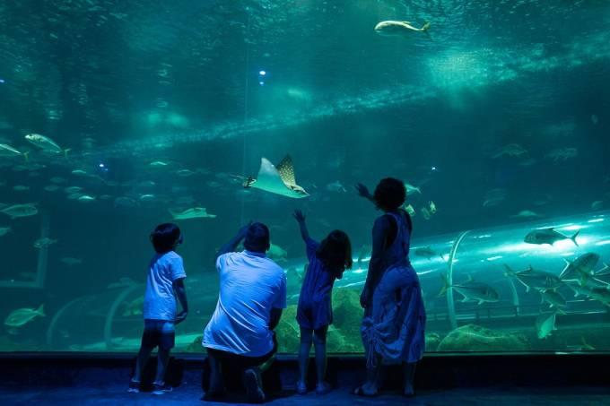 aquariofamilia