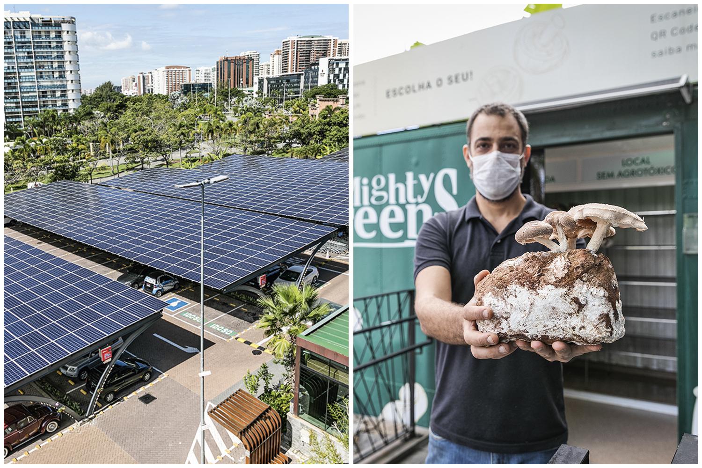 Aproveitamento de energia solar, produção no próprio ponto de venda, entregas com transporte não poluente e logística de lixo zero são algumas das frentes abertas pelo supermercado Zona Sul. No dia 1º de junho, a marca inaugura a sua Central de Resíduos Recicláveis