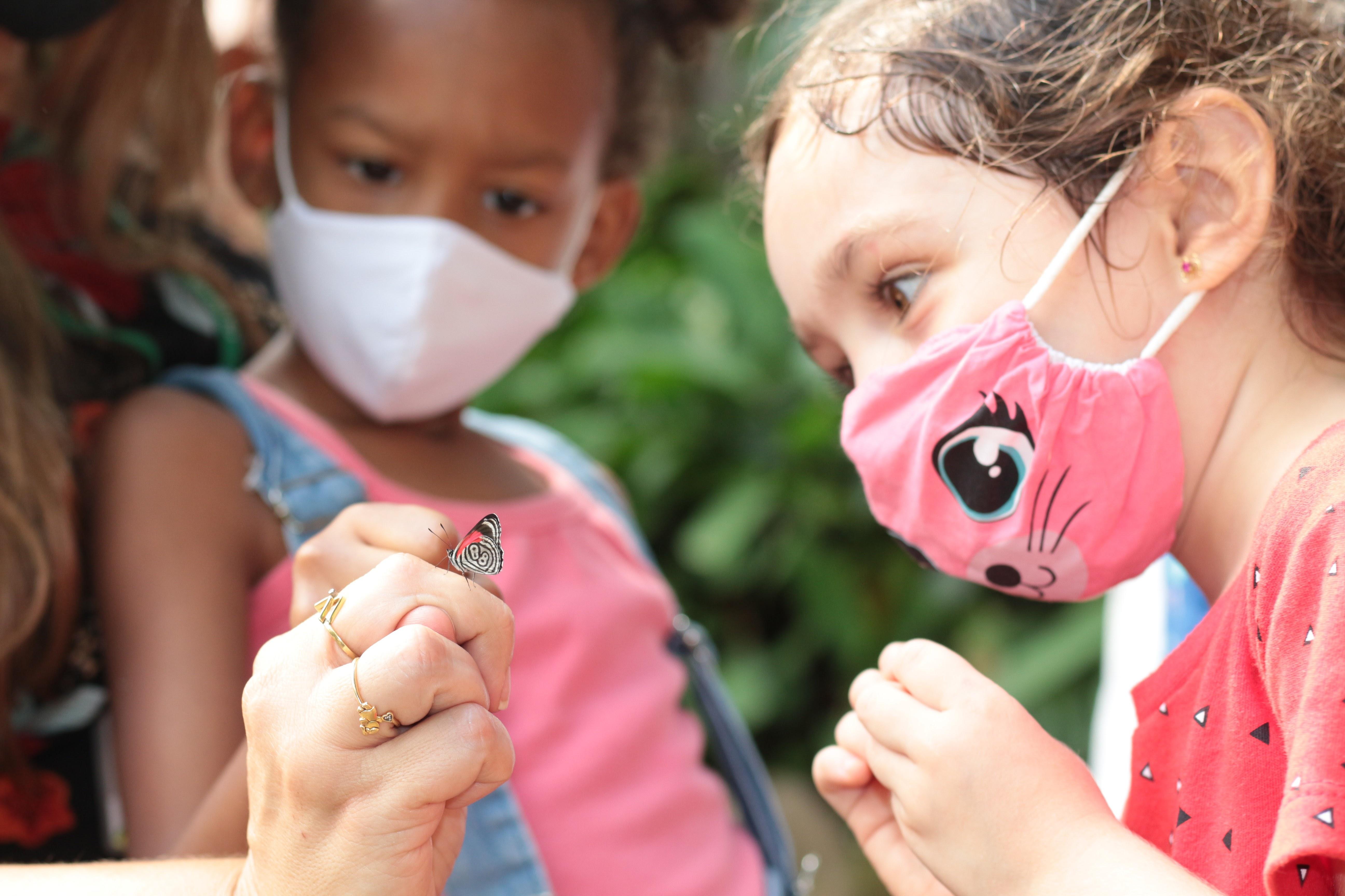 Crianças olham para borboleta