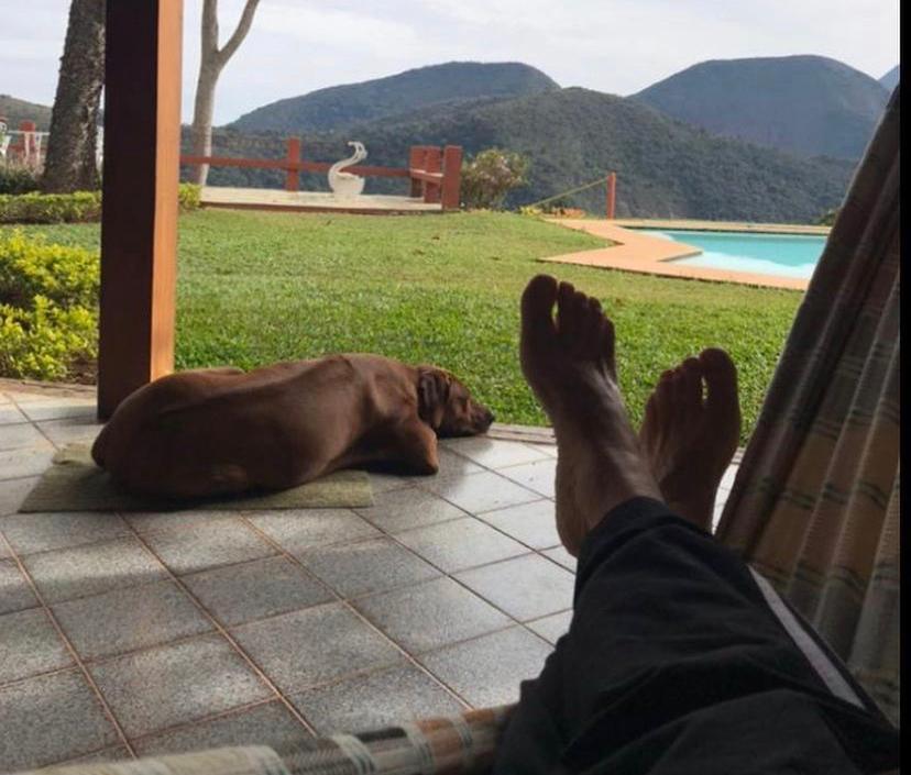 A imagem tem como foco as pernas cruzadas de jose mayer, com um cão ao lado, denotando tranquilidade