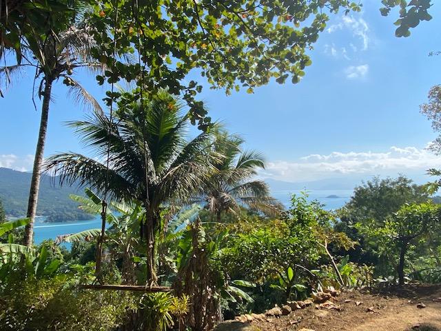A vista do Jungle Lodge