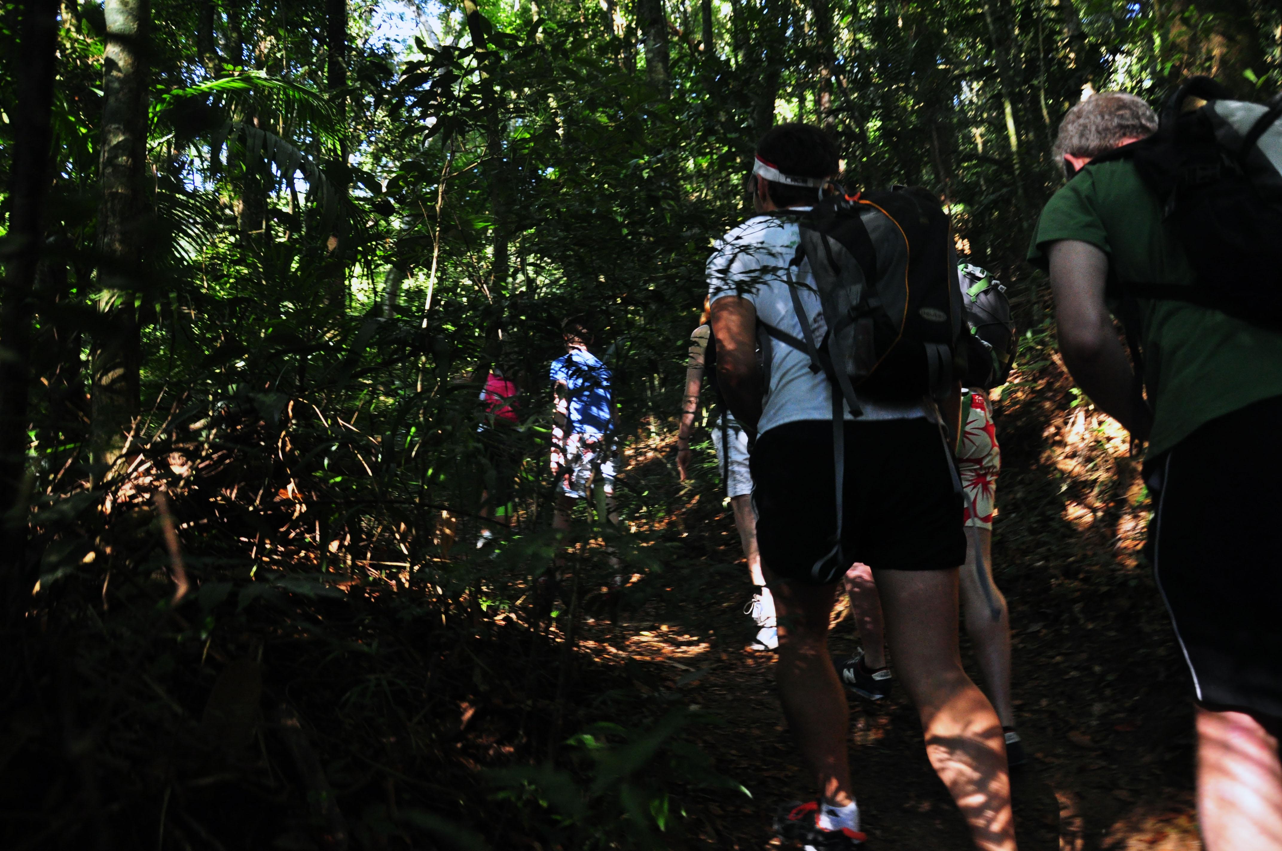 Foto mostra pessoas na trilha