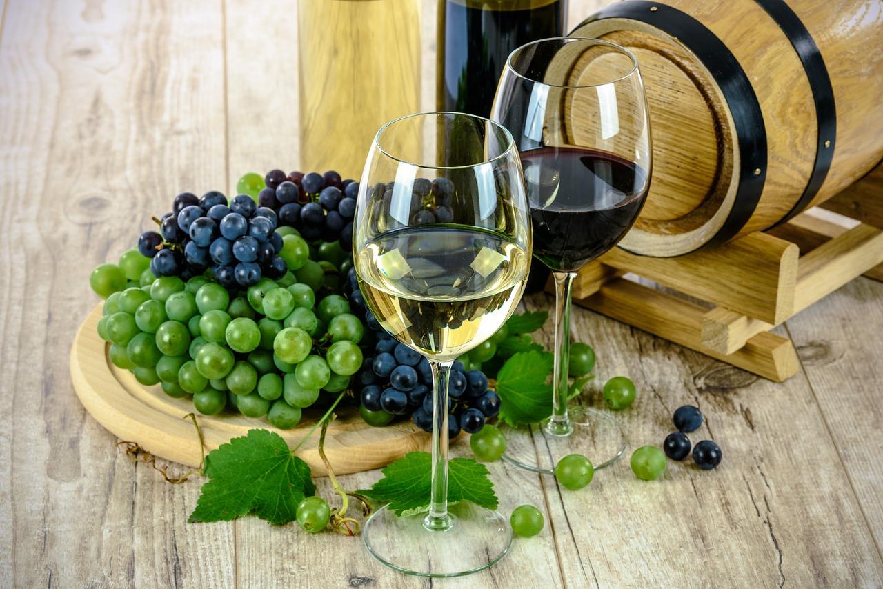 Exposição de vinhos: para celebrar o Dia dos Pais